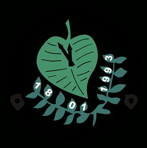 Društvo mladih ekologa Nikšić