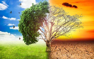 Koalicija27 : Zelena agenda poziva na racionalno promišljanje o klimatskim i ekološkim ciljevima